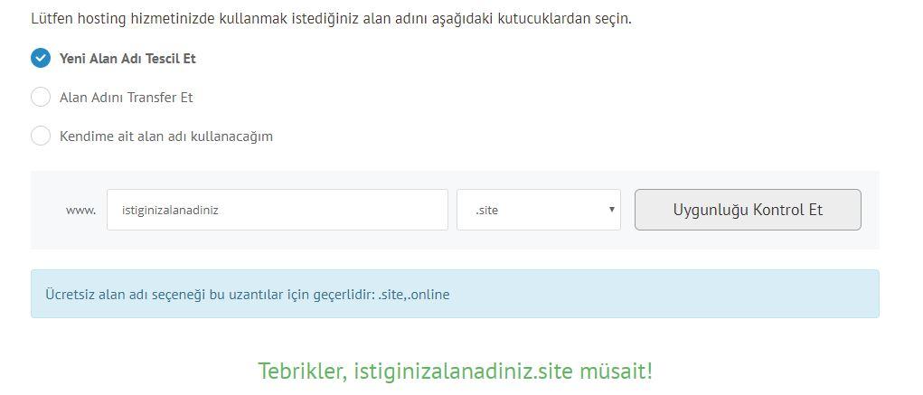domain-sec-domain-sorgula-satin-al