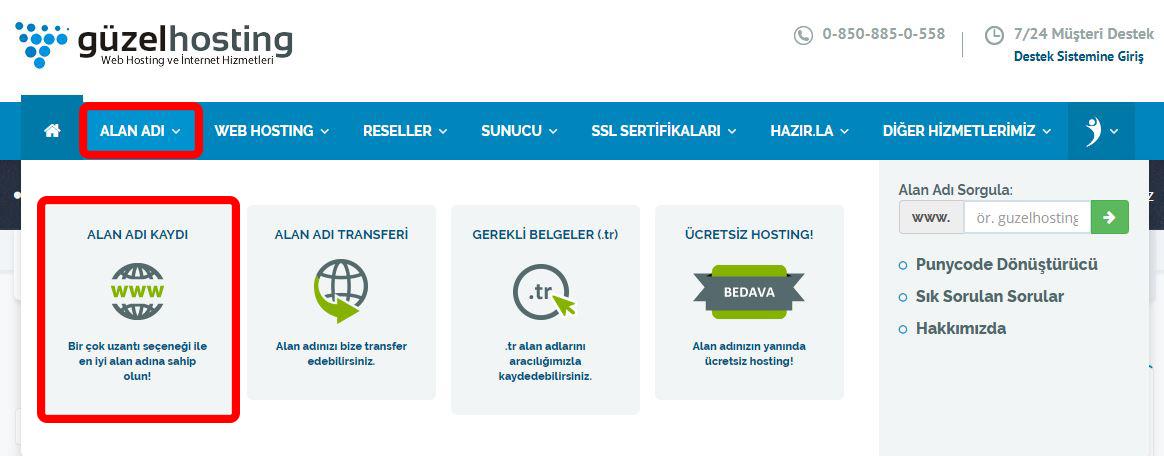 guzel-hosting-domain-satin-al